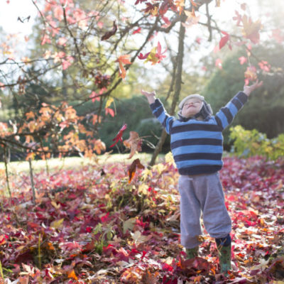 A small child playing in the fallen leaves