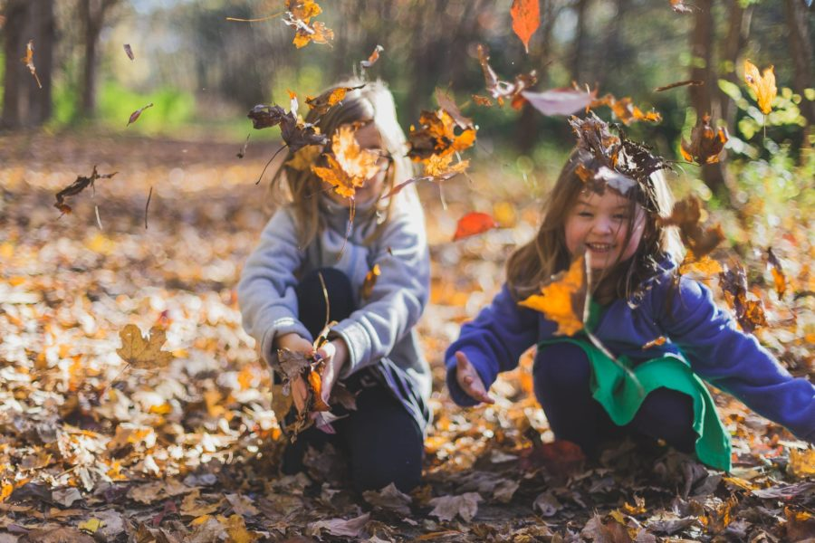 Two young children have fun throwing leaves up into the air.