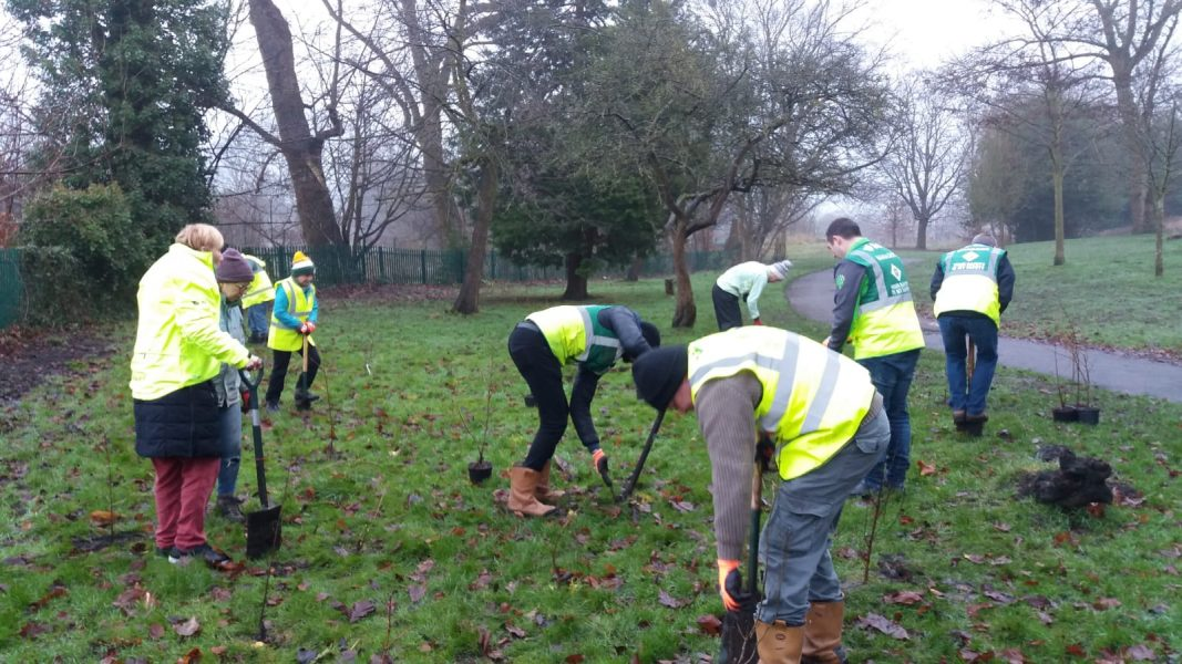 Chorlton Park Friends Group tree planting in the park