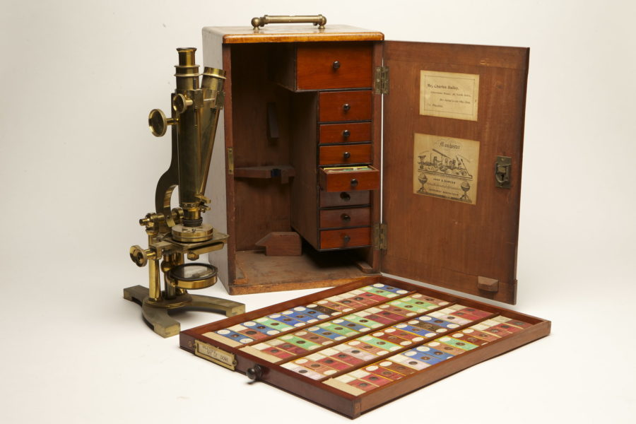 An old fashioned boxed microscope and a collection of nature slides.