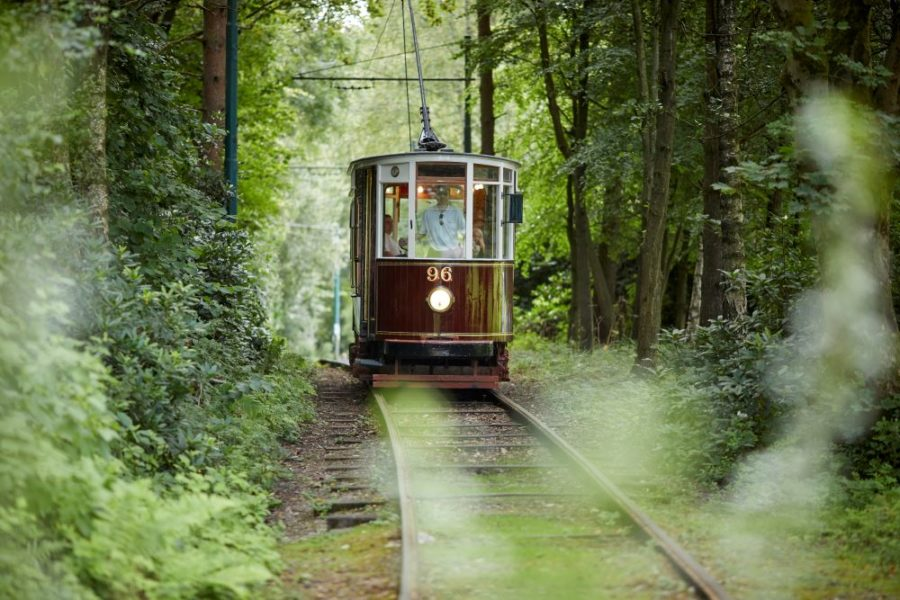 A tram rides through the tree-lines tramway in Heaton Park.