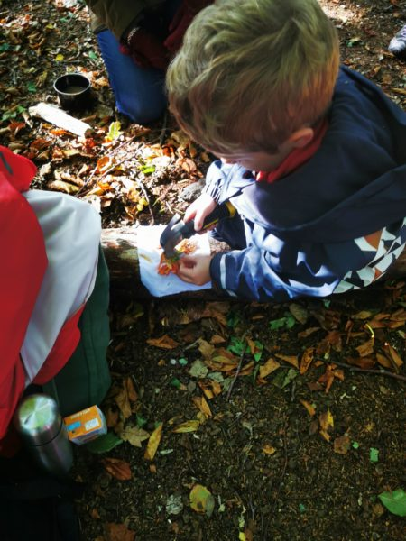 A small child sits on a forest floor making art from natural materials.