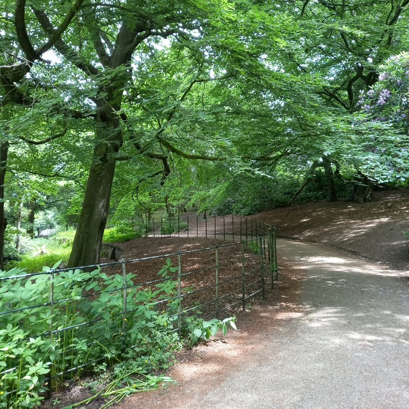 A tree-lined path in Heaton Park.
