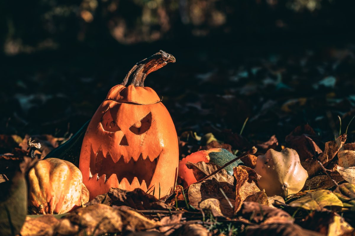 A carved pumpkin sits on a bed of leaves in a park.